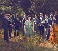 תמונה 10 של זברה מוסיקה - תקליטנים
