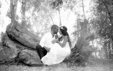 תמונה 6 של ינאי רובחה - צלם - צלמי סטילס