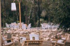 תמונה 2 של צל הדומים - אולמות וגני אירועים