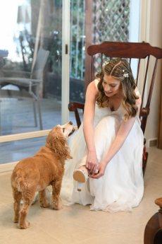 תמונה 9 מתוך חוות דעת על רן צוריאל - שמלות כלה