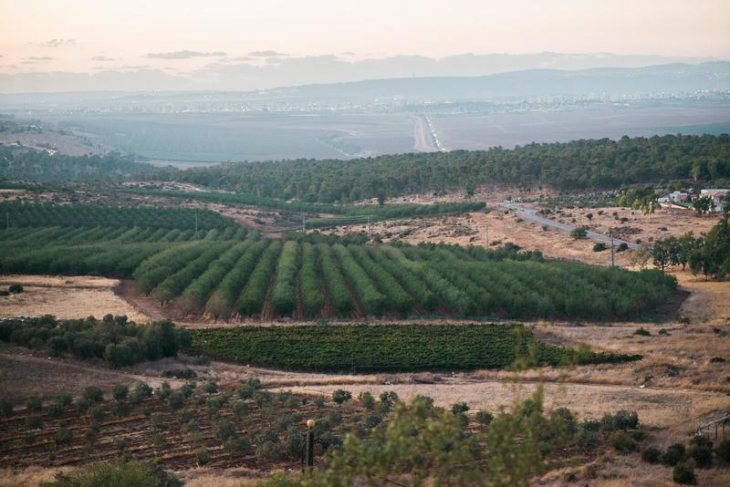 תמונה 3 מתוך חוות דעת על חוות התבלינים בגלבוע - אולמות וגני אירועים