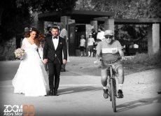 תמונה 9 מתוך חוות דעת על אלוני מור -Zoom 99 - צילום וידאו וסטילס