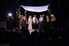 תמונה 4 מתוך חוות דעת על מועדון התיאטרון - אולמות וגני אירועים