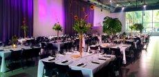 תמונה 5 מתוך חוות דעת על עמית עיצוב אירועים - עיצוב אירועים