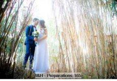 תמונה 1 מתוך חוות דעת על אור זהבי - צילום וידאו וסטילס