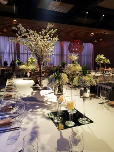 תמונה 7 מתוך חוות דעת על שושן צחור - עיצוב אירועים