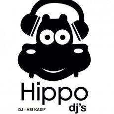 תמונה 5 של אסי כסיף | hippo djs - תקליטנים