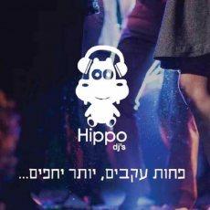 תמונה 6 של אסי כסיף | hippo djs - תקליטנים