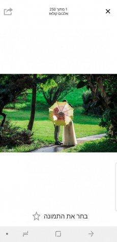 תמונה 11 מתוך חוות דעת על כתום צלמים - צילום וידאו וסטילס