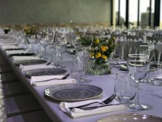 תמונה 1 של סגרא מבית לימוזין אירועים ואירועי קייטרינג - אולמות וגני אירועים