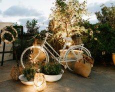 תמונה 3 של שמורתה גן אירועים - אולמות וגני אירועים