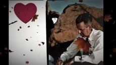 תמונה 2 מתוך חוות דעת על רב רפורמי אמיר וינד - חתונה רפורמית - עורכי טקסים אלטרנטיביים