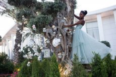 תמונה 7 של נסיה - מתחם חלומות ואירועים - אולמות וגני אירועים