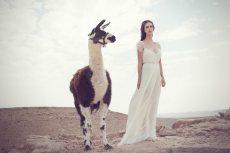 תמונה 1 של שימקה - שמלות כלה