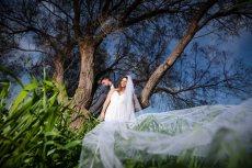 תמונה 1 של סימפל גולן ואלינה - simple - צילום וידאו וסטילס