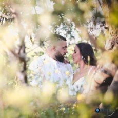 תמונה 5 מתוך חוות דעת על סימפל גולן ואלינה - simple - צילום וידאו וסטילס
