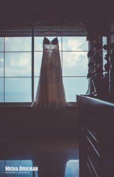 תמונה 1 מתוך חוות דעת על ערבה פולק - שמלות כלה - שמלות כלה