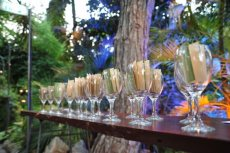 תמונה 9 של החורשה גן ארועים - אולמות וגני אירועים
