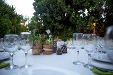 תמונה 9 מתוך חוות דעת על החורשה גן ארועים - אולמות וגני אירועים