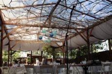 תמונה 4 מתוך חוות דעת על ללוס  - גן אירועים - אולמות וגני אירועים