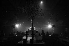 תמונה 10 של רומבה צלמים - צילום וידאו וסטילס