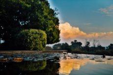תמונה 3 של עדן על המים - אולמות וגני אירועים