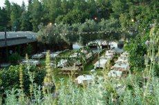 תמונה 1 של חוות דרך ארץ  - אולמות וגני אירועים