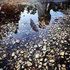 תמונה 4 של שחר דרורי - צילום וידאו וסטילס
