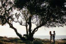 תמונה 3 מתוך חוות דעת על שחר דרורי - צילום וידאו וסטילס