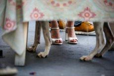 תמונה 7 מתוך חוות דעת על שחר דרורי - צילום וידאו וסטילס