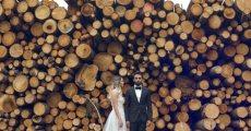 תמונה 2 מתוך חוות דעת על יניב שמן צלם - צלמי סטילס