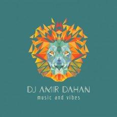 תמונה 1 של אמיר דהן - מוסיקה לאירועים - תקליטנים