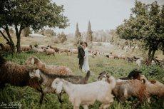 תמונה 6 מתוך חוות דעת על מתחתנים למען מתחתנים - אתרים ואפליקציות לחתונה