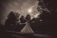 תמונה 9 של לירון סער - Wow צלמים - צילום וידאו וסטילס