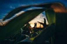 תמונה 1 של דניס בוטנרו - צלם - צילום וידאו וסטילס