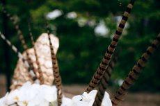 תמונה 10 מתוך חוות דעת על צל החורש - מקומות לאירועים בטבע