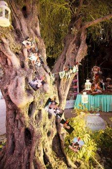 תמונה 4 של אמיליה - גן אירועים - EMILIA - אולמות וגני אירועים