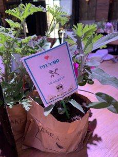 תמונה 3 מתוך חוות דעת על לילי - עמדת שזירה ועיצוב חתונות  Lily - Flower Booth - עיצוב אירועים