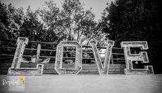 תמונה 7 של DigitalPic - דיגיטל פיק - אישורי הגעה לחתונה