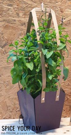 תמונה 10 של SPICE YOUR DAY- עציצי תבלין מעוצבים - עיצוב אירועים